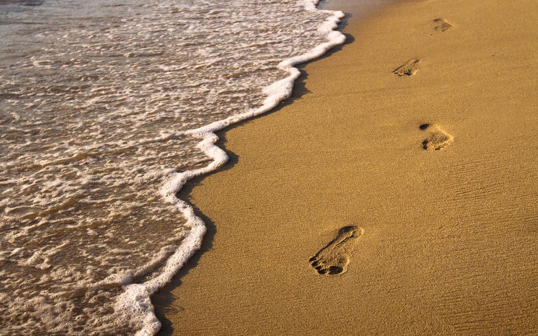 Ako ne znaš kuda ideš, svaki put će te odvesti do tamo. Lewis Carroll